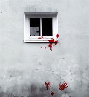 Негативное окно. Инна Сударева