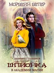 Шпионка в Академии Магии. Lady Morvein