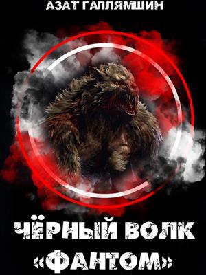 Черный волк - Фантом. По ту сторону смерти. Азат Галлямшин