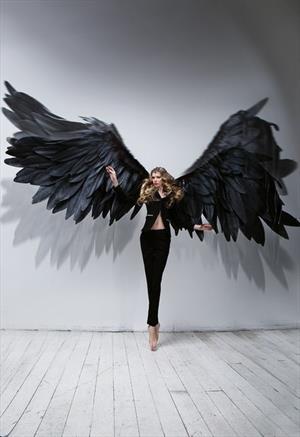 Крылья нужно заслужить. Valery Frost