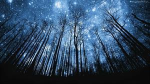 Сказка о маленьком угольке и больших звездах