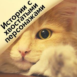 Истории о хвостах. Больше историй о котиках любителям котиков)