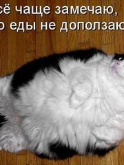 Васисуалий. Светлана Рязанская