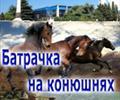 """Подписка на роман """"Батрачка на конюшнях"""""""